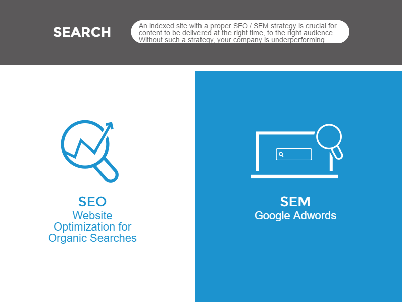 Web Strategy - Search Engine
